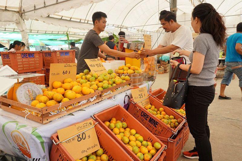 ชวนเที่ยว! เมืองทอง ตลาดเพื่อการเกษตร 4.0